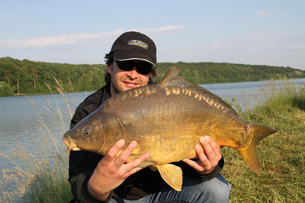 Spiegelkarpfen_Rudi_7,10 kg